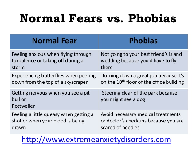Fear or Phobia – City College Times | City College Times