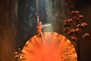 Cirque du soleil review