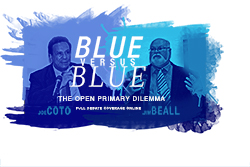 Blue versus blue: The open primary debate