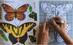 SJCC art instructor Ingrid Brook-Kothlow demonstrates how to make butterfly kits on her YouTube channel on May 22.