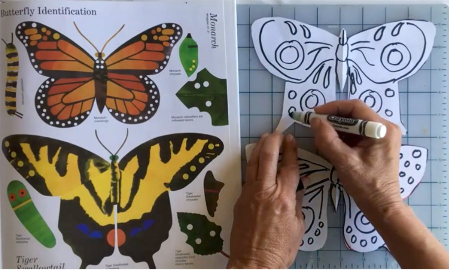 SJCC+art+instructor+Ingrid+Brook-Kothlow+demonstrates+how+to+make+butterfly+kits+on+her+YouTube+channel+on+May+22.